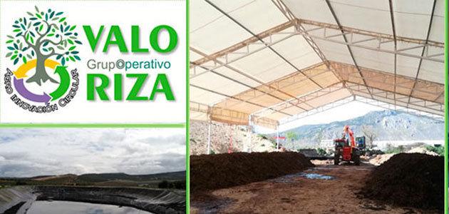 El proyecto Oleovaloriza investiga la conversión de desechos oleícolas en abono económico y de calidad