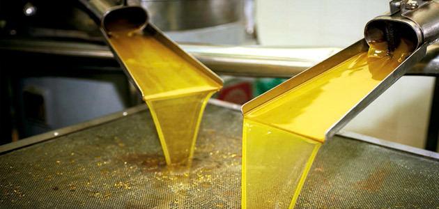 Finaliza la cuarta edición del curso de formación en elaboración de aceite de oliva de GEA y la UJA