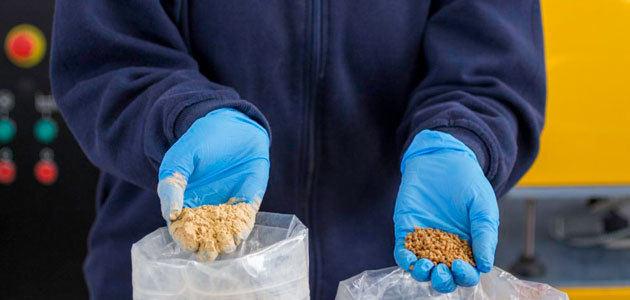 En busca de un nuevo material plástico sostenible para el envasado de aceite de oliva a partir de los huesos de aceituna