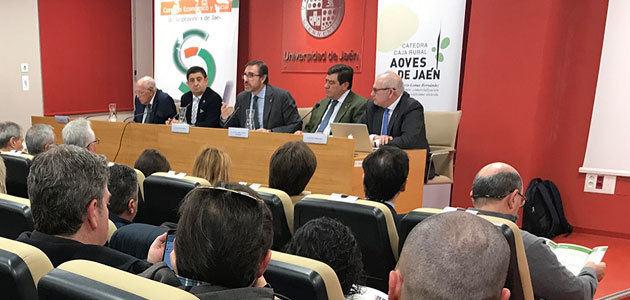 Expertos del sector abordan la repercusión de la PAC post 2020 en la oleicultura jiennense