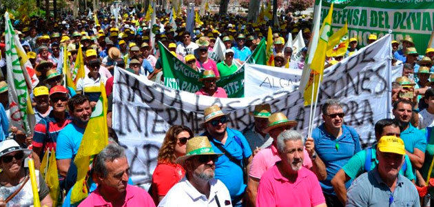 El sector olivarero llama a toda la provincia de Jaén a concentrarse el 24 de febrero
