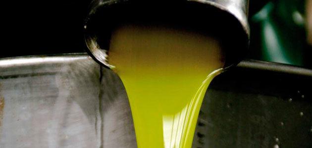 Olivicultores italianos, preocupados por la situación del mercado de aceite de oliva