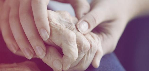 Investigan los efectos neuroprotectores del AOVE en el Parkinson