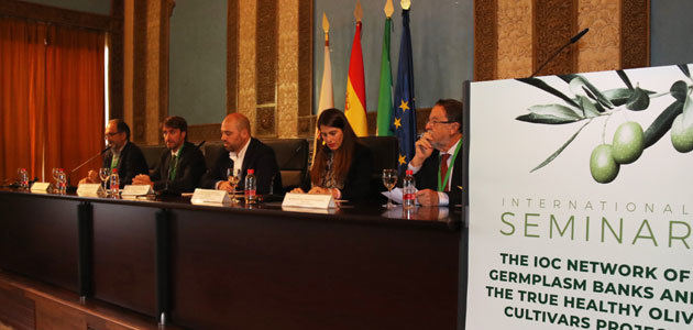 Córdoba reúne a 22 bancos de germoplasma de olivo para avanzar en protocolos de autentificación genética